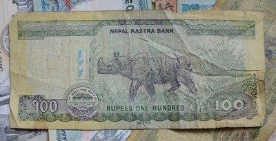 100-Rupien-Note