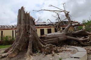Matthew_écoles_Haïti