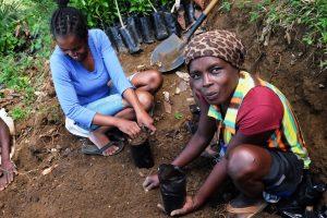 A Léogâne, la Croix-Rouge suisse soutient 500 familles de paysans formées à la technique de la terra preta